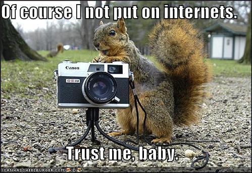 Squirrel Porn